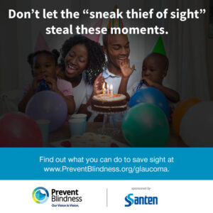 """Don't let the """"sneak thief of sight"""" steal these moments"""