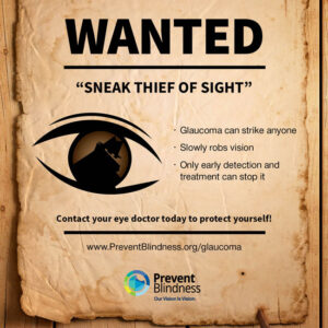 WANTED: Sneak thief of sight