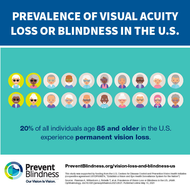20% of all individuals age 85 and older in the U.S. experience permanent vision loss.