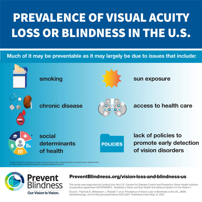 Much vision loss may be due to preventable causes