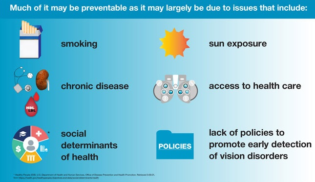 The variance of visual acuity loss and blindness between states may possibly be largely due to preventable issues